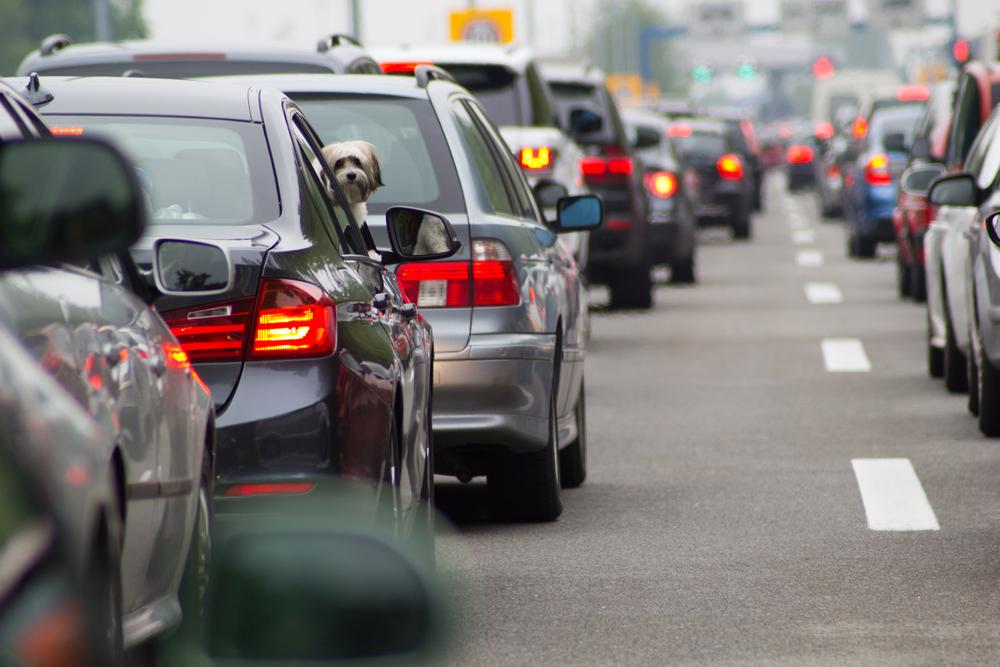 交通違反点数制度の仕組み