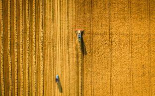 農地を相続する流れと相続税を節税する方法