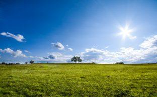 土地の生前贈与を適切に行うための7つのポイント
