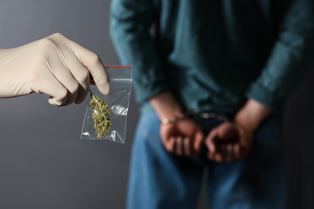 大麻初犯で逮捕されたら