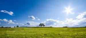 土地を生前贈与する5つのステップと本当に節税メリットがあるかチェックする方法